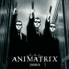 Animatrix - Im002.JPG