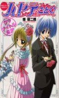 Hayate no Gotoku - Guide Book